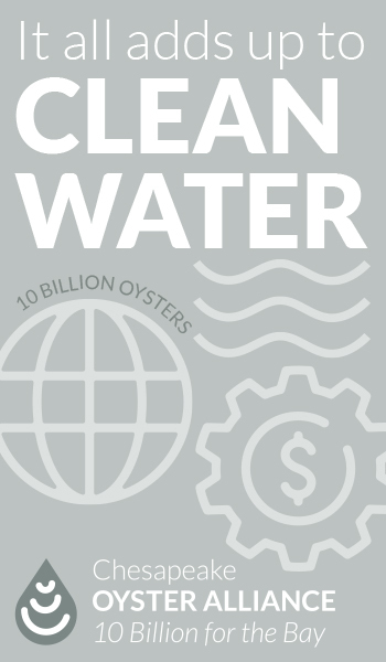 It all adds up to clean water. Chesapeake Oyster Alliance